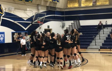 Girls Volleyball Places 2nd