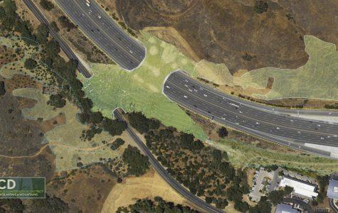 California to Build Wildlife Crossing Over 101 Freeway