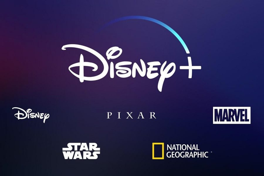 Disney+ features many different entertainment platforms.