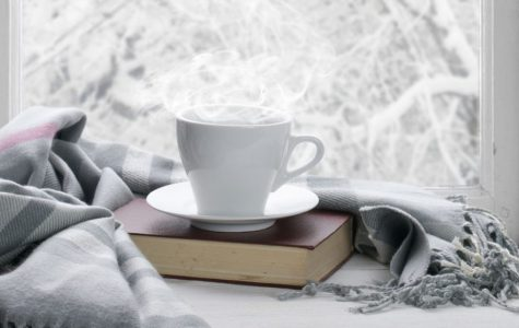 Holiday Wrap-Up: A Collection of Holiday Book Reviews