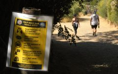 The Innsdale Trail near the Hollywood Sign reopened recently along with many other trails and parks